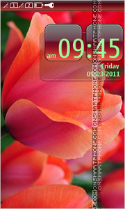 Flowers tulips tema screenshot