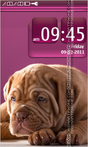 Cute puppy 08 tema screenshot